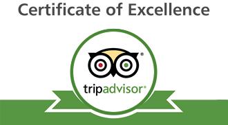 trip advisor belfast black taxi tour